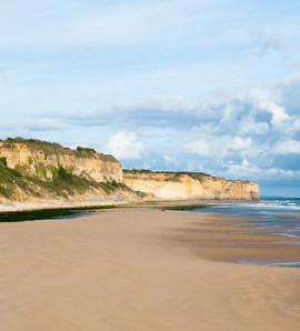 Paris: All Day Guided Normandy Beaches Tour with Lunch