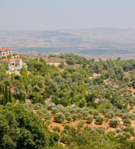 Be a Farmer for a Day in Jerash